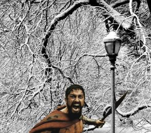 Leonidas in Narnia